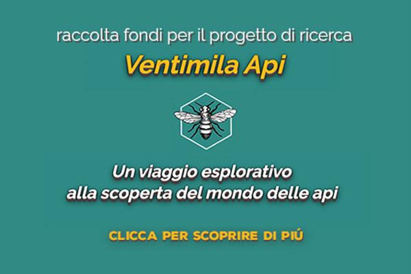Scopri il progetto Ventimila Api a cura di BUONO