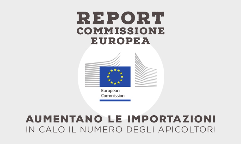 Report Commissione Europea triennio 2014-2016